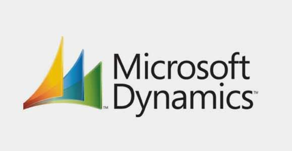 MS Dynamics CRM Users List - InfoDepots