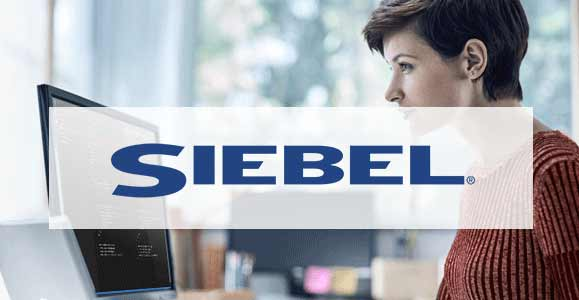 Siebel CRM Users List - InfoDepots